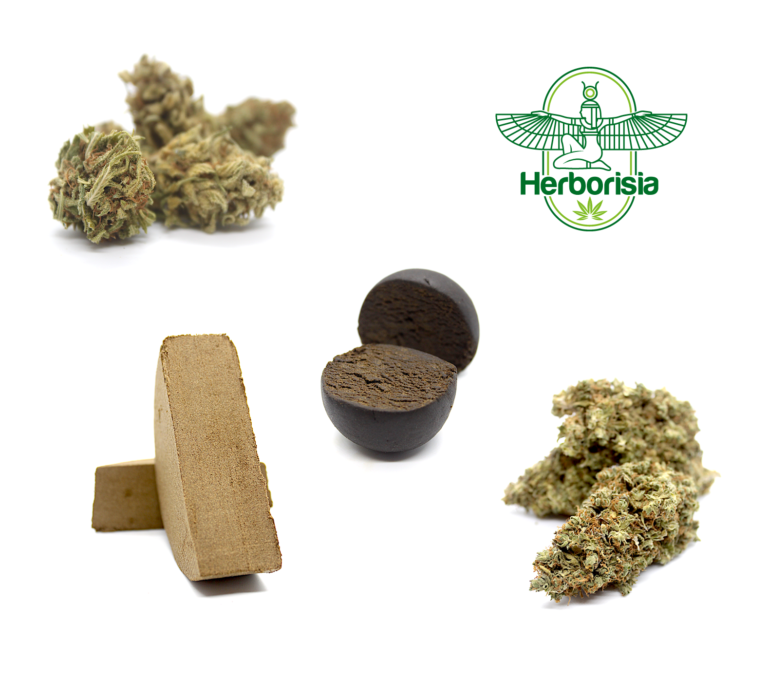 CBD Hemp Shop - Herborisia.co.uk